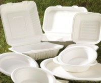 Compostable Products | Eco Friendly Bowls