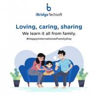 iBridge Techsoft | Digital Marketing | Web Development | Consulting