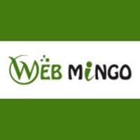Web Mingo | Web Design | Development Company | Lucknow