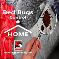 Pest Control Near Me – Sadguru Pest Control