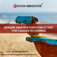 Canada Immigration Consultants in Chennai, Novus Immigration Chennai