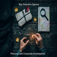 Reputed Detectives in Chandigarh