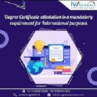 IVS Global Services for MEA Attestation