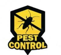 Grace Pest Management | Pest control services