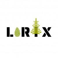 Larix Technologies