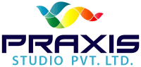 3d architectural visualization - Praxis Studio Pvt Ltd