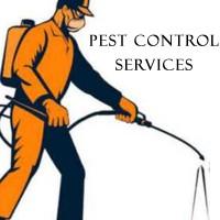 UDAIPUR PEST CONTROL