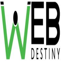 Best Custom Ecommerce Website Development Company in India | Web Destiny Solutions