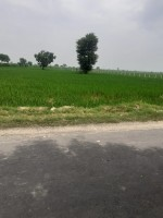 Agriculture / Farm house sale in Greater noida Yamuna Expressway
