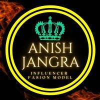Anish Jangra Digital Marketer