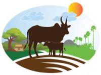 Annam Milk - Milk Home Delivery In Chennai
