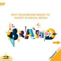 best digital marketing agency in bhopal