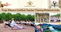 Review Yoga Schools