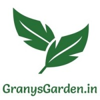 Grany's Garden | Terrace Gardening | Gardening Seeds and Essentials