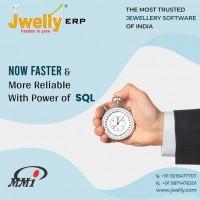 best jewellery software