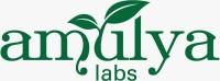 Amulya Labs Manufacturing