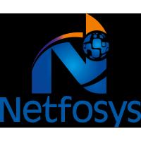 NETFOSYS INFORMATION TECHNOLOGIES INDIA PVT LTD