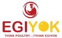 Egiyok news