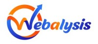 Webalysis - The Best Digital Marketing Company In Udaipur