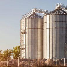 Farmer To Consumer Supply Chain