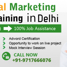 Advance Digital Marketing Course In Delhi
