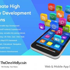 Best Mobile Application & Website Development Company- Thedevswelly Technologies