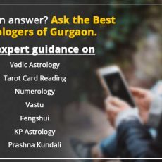 famous astrologer in gurgaon