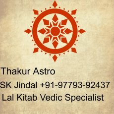InterCast Marriage specialist in Ghaziabad+91-97793-92437
