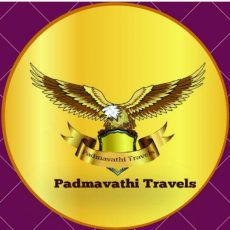 www.balajidarshanbooking.com - One day package from chennai to tirupati