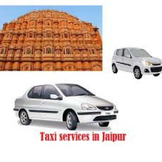 Best Tour and Taxi Services In Jaipur