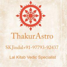 Famous astrologer Jindal Lal Kitab Vedic+91-9779392437