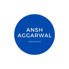 Freelancer   Ansh Aggarwal   Digital Marketing Services  