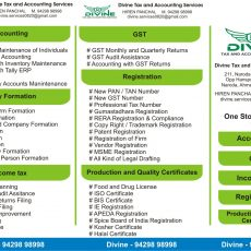 Divine Tax and Accountingg Services