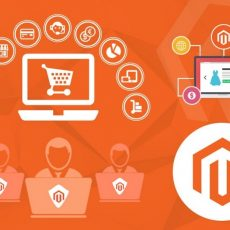 Looking for Magento Development Services in India?