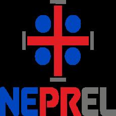 NEPREL SOLUTIONS