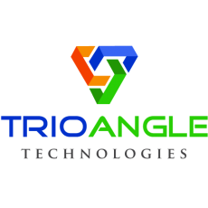 Optimize your business by hiring the best web developers | Trioangle Technology