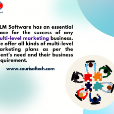 Top MLM Software Company in Jaipur