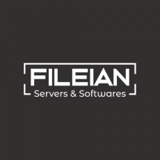 Get your business on Cloud with Fileian