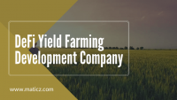 Experts for your business Yield Farming platform